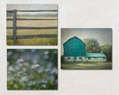 Country Photography Set of 3, Green Rustic Wall Art Set, Fence Photograph, Blue Flower Photo, Barn Picture, Farmhouse Decor, Farm Print Set
