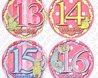13 to 24 month baby photo stickers monthly baby stickers 4 inch Belly Stickers for newborn Baby Shower Gift Idea sticker set STICHY STICKIES