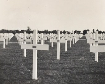 Original Antique Photograph Anzio Beach Head War Cemetary 1946