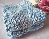 Blue Twists Dishcloth Set