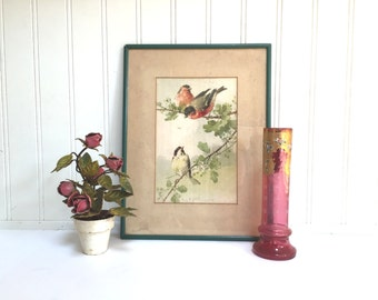 VINTAGE C. Klein Print - Bird - BIRDS - Original Print - Wood Framed - Natural - Nature -