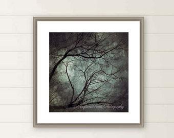 Creepy tree print, Dark Art, Branches, Tree, Mystery, Fine art photography, creepy, botanical, green, Wall decor, iphoneography, under 50