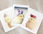 "Chicks in Hats Blank Pocket Journal Set (3) Booklets Chickens Small Note Book 4.5""x 5.5"""