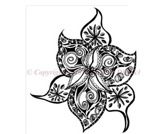 Black and White Art Pen and Ink Flower Design Illustration Signed 8 x 10  Print Home Decor Design Drawing