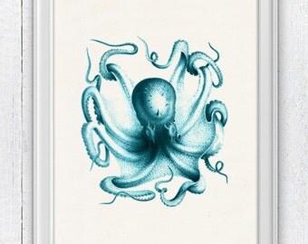 Vintage octopus n6- sea life print-Turquoise octopus- vintage natural history SPA037