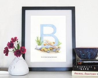 Barton Springs Salamander - 8 x 10 Print
