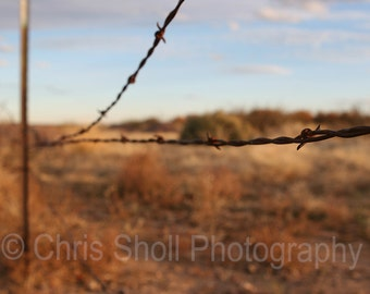 Fence, Fine Art Photography, Nature, Arizona, Desert, landscape PRINT OR CANVAS
