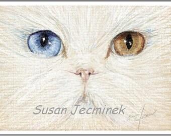 "Art Giclee Print Unframed ODD-EYED CAT (2 sizes, 5"" x 7"" and 8"" x 10"" giclee prints)"