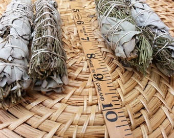 Small Rosemary and White Sage (Salvia Apiana &  Rosmarinus Officinalis) Bundle approximately 4 inches, wild harvested, Reiki infused