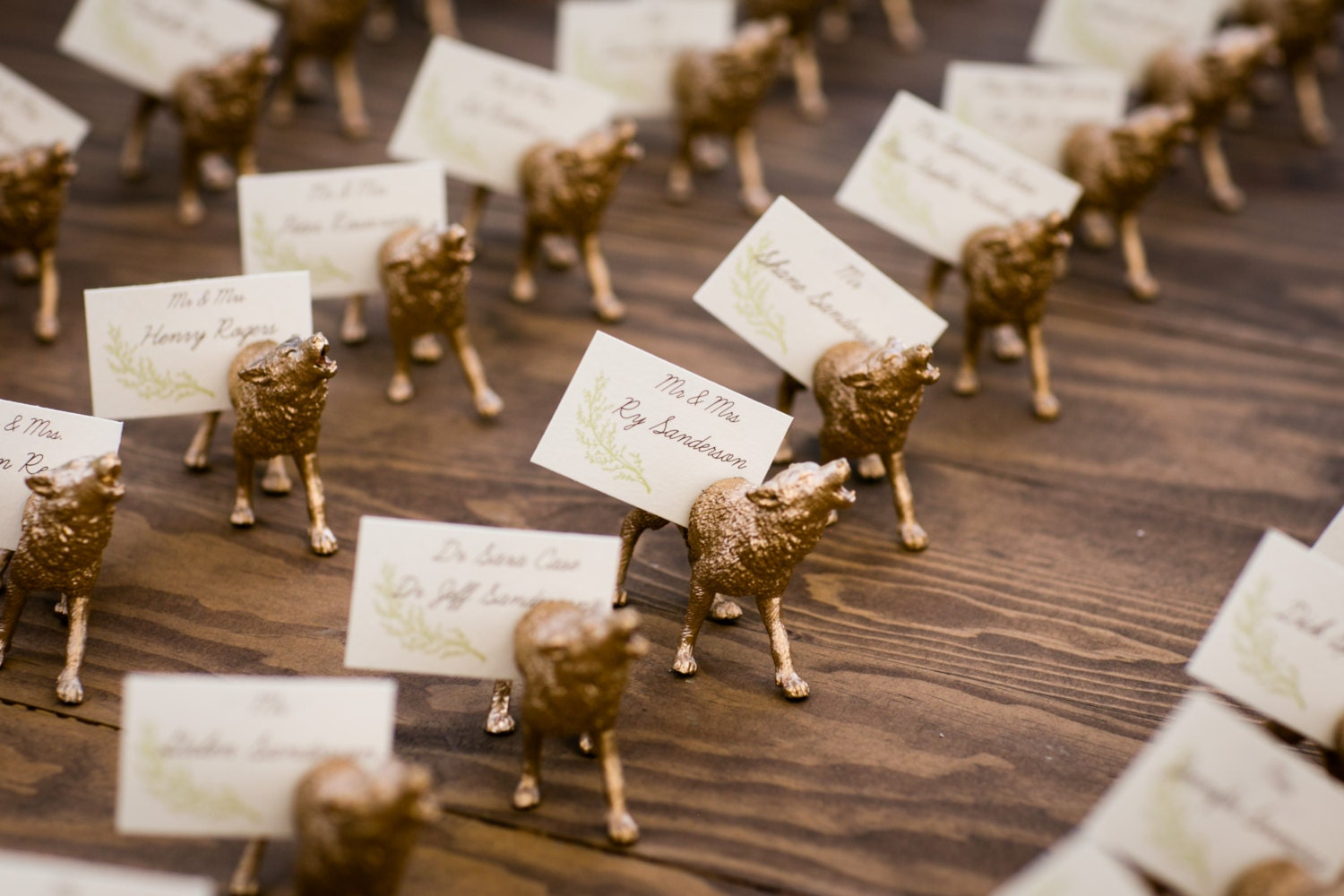 Custom Animal Magnet Place Card Holders Variable Numbers