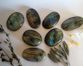 assorted flashy labradorite specimens