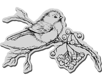 """New SNOWBIRD CHRISTMAS Winter Cling Rubber STAMP by Stampendous 4"""" x 3""""  Snow Bird"""