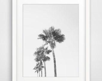 California Photography, California Art, Printable Wall Art, Wall Decor, Palm Tree Photography, Monochrome Photography, Black and White