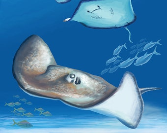 Rays - Visit the Aquarium (Art Prints available in multiple sizes)