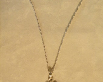 Pendant on a Silver Chain