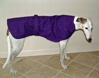 R7 Light weight Purple Greyhound Raincoat.  Free Shipping!