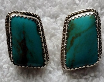 Blue Turquoise with Brown Matrix