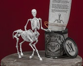 Centaur in a Can 3D Print Taxidermy Poseable Figure