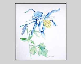 Gathering of Doves - Print of Columbine in soft blues with yellows