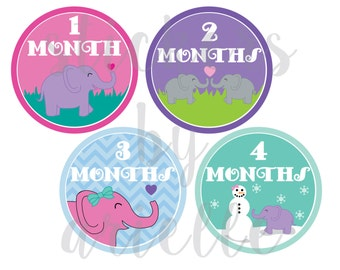 Month by Month Baby Girls Stickers - Elephant
