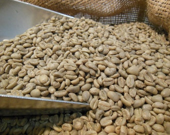 Green Coffee Beans - Ethiopia Bench Maji Wild Forest Organic, Unroasted 3-25lbs