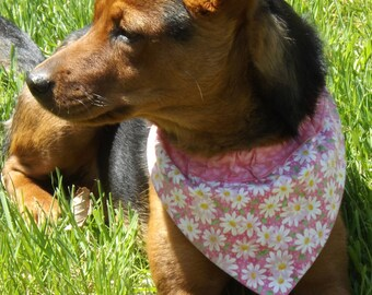 Pet Bandana Collar Slide - Medium