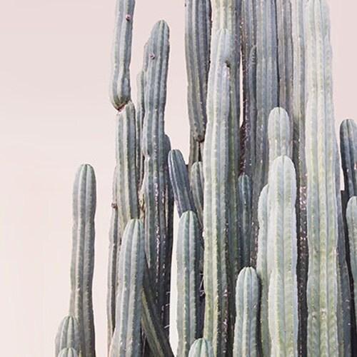 Contemporary art for your home von wildercalifornia auf etsy