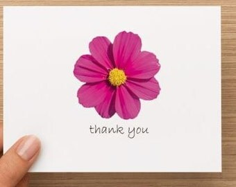 Thank you card: Anemone Pink Flower , personally photographed and designed, package of 10 or 20