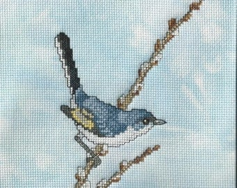 Blue Gray gnatcatcher Completed cross stitch
