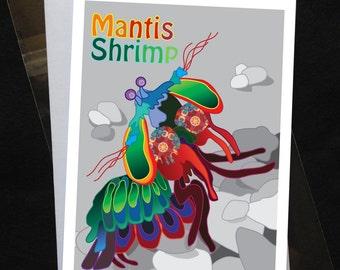 Greeting Card - Mantis Shrimp