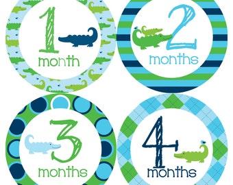 Alligator Monthly Onesie Stickers