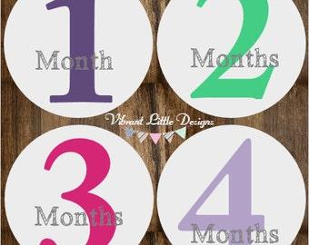 Milestone Stickers Girl, Milestone Stickers, Month Stickers, Baby Month Stickers, Baby Stickers #151
