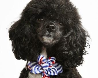 Anchors Dog Flower Collar