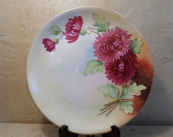 Antique Hutschenreuther Selb Bavaria Hand Painted Plate Germany