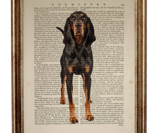 Black And Tan Coonhound Dog, beautiful Art Print on Upcycled Dictionary Book page 8'' x 10'' inches