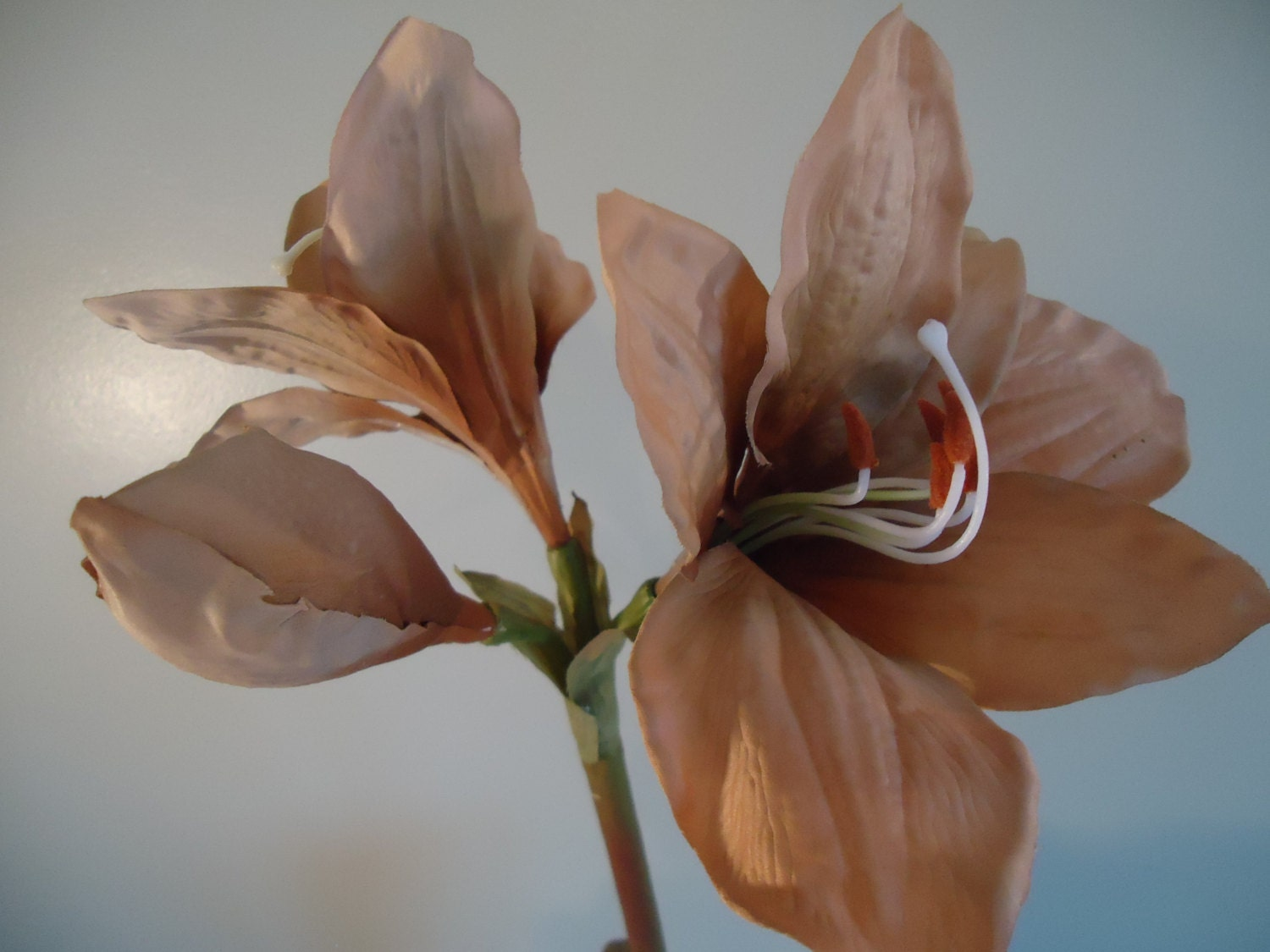 3 tall beige amaryllis sprays faux flowers diy floral for Amaryllis deco