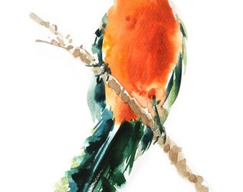 Bird  Painting , Bird watercolor painting, watercolor, Bird print Art print size 8X11 inch for room décor and special gift  No.299