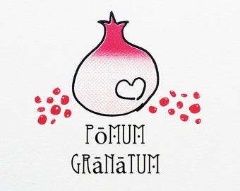 Pomum granatum (or the humble Pomegranate), Mediterranean, Wall Print, Home Art, Red Fruit