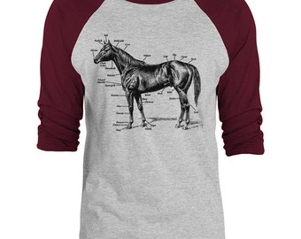 Mintage Anatomy of a Horse Unisex 3/4-Sleeve Raglan Baseball T-Shirt