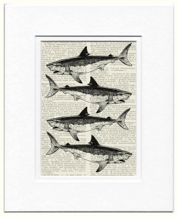 sharks dictionary page print