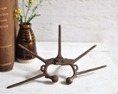 Antique Cast Iron Metal Nose Clamp Calf Weaner Primitive Farm Implement Tool Spiked