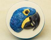 Hyacinth Macaw Sculpture, Parrot Art, Polymer Clay Bird on Wooden Keepsake Box, Tropical Bird Lover Gift, Bas Relief Sculpture