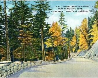 Vintage Postcard - Autumn at Great Smoky Mountains National Park (Unused)