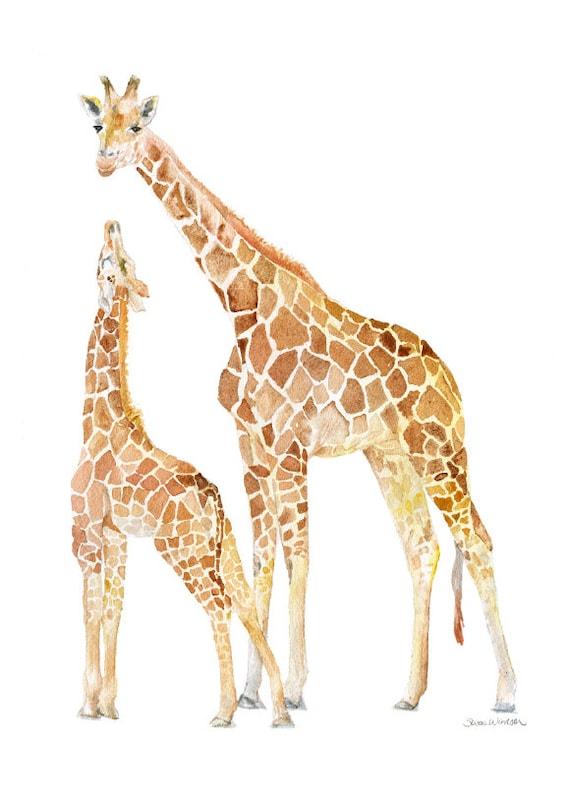 Giraffes Watercolor Painting 5 X 7 Giclee Print