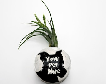 Pet Portrait Magnetic Bud Vase | wall hanging vase | holds flower herbs airplant succulent pen pencil holder | customized from your photo