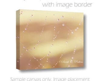 Pearls of Water-Spider Web Photography-Fine Art Wall Canvas-20x30 Raindrops-Muted Autumn Colors-Pale Yellow-Salmon-Cream-Abstract Nature Art