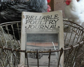 Reliable Poultry Journal 1924 Antique paper