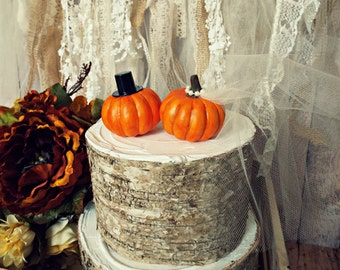 Pumpkin fall wedding cake topper fall themed wedding bride and groom Thanksgiving Autumn Mr and Mrs country barn rustic mini pumpkin topper