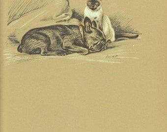 Antique Dog Print, Bulldog Cat Art Illustration to Frame, Book plate, brown black, Wall Hanging, Book page, Lucy Dawson, siamese, B-1