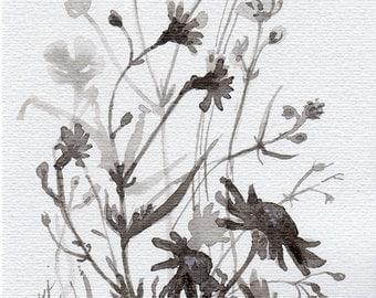 Black&white Flowers, original Ink illustration, field flowers, botanical, floral, cottage chic decoration